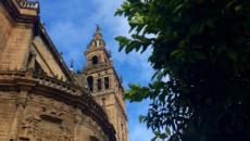 Sevilla: ruta gastronómica y cultural