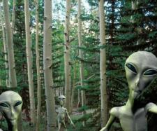 SETI Astronomer Seth Shostak: We'll Find Intelligent Alien Life ... - (Image via Newsweek/Youtube)