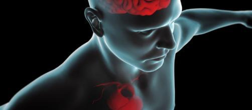 La estimulación de la mente y el cuerpo puede mejorar tu descendencia