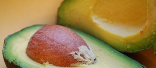 Pesquisadores revelam os benefícios do abacate, principalmente para emagrecer