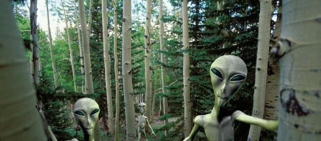 Will humans ever be able to identify extraterrestrial life?