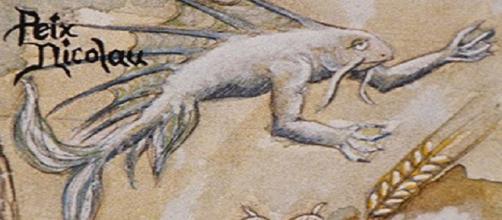 Dibujo del Peix Nicolau, legendario ser mallorquín.