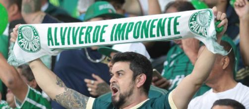 Jogo contra o Internacional será no estádio do Pacaembu. (foto reprodução).