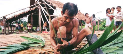 O homem amazônico é o guardião da sabedoria milenar