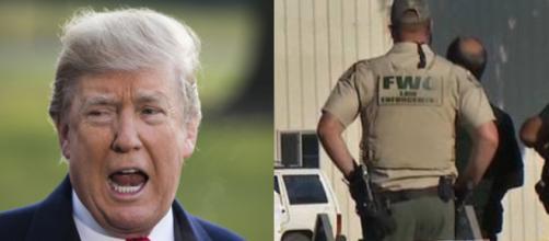 Donald Trump on Florida shooting, via Twitter