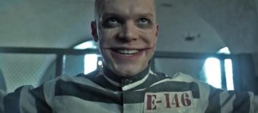 sería pariente del Joker en Gotham - latercera.com
