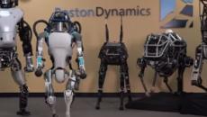 Varias universidades crean un ejército de micro-robots para salvar el planeta