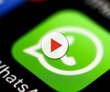 Whatsapp: le cose da sapere sulla popolare app di messaggistica