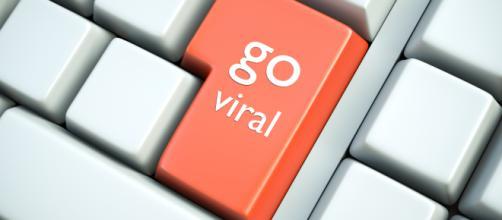Los vídeos virales de esta semana