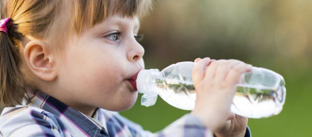 El agua es esencial para la vida