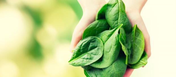 Los beneficios de la vitamina K - sabervivirtv.com