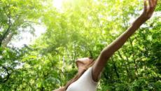 Los grandes beneficios de la naturaleza