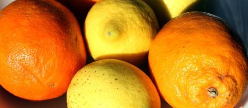 Beneficios y usos de los cítricos. | Notas Naturales - notasnaturales.com