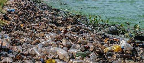 Plastic contamination in Estado Zulia Venezuela, the biggest lake of South America. - [Image credit The Photographer, Wikimedia Commons]