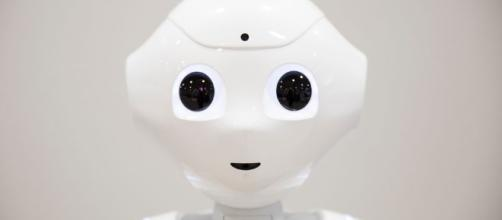 Robot se postula a elecciones en Japón y consigue 4.013 votos