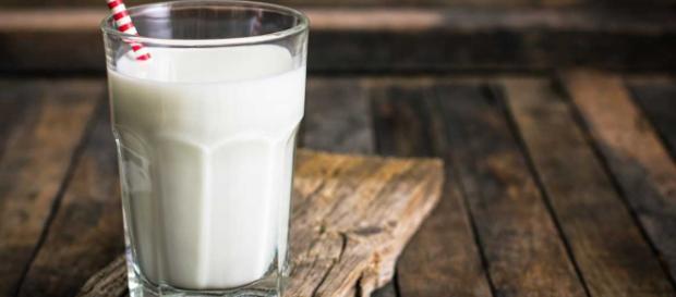 ¿Qué leche es mejor tomar? - sportlife.es