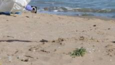 Seminuda col cranio fracassato: forse cinese la donna trovata morta a Catania