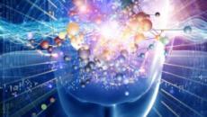 Avances y descubrimientos sobre la enfermedad de la neurona motora