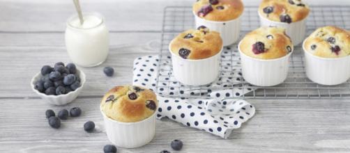 Ricetta Muffin ai mirtilli - Cucchiaio d'Argento - cucchiaio.it