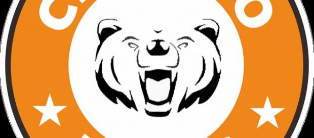 Bears to open the season verse the Packers - Image credit - Karanayuda33 | Pixabay /