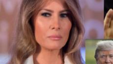 Melania responds, Donald silent over George H.W. Bush in ICU, Twitter unloads