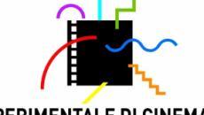 Casting per un film prodotto dal Centro Sperimentale di Cinematografia e altro