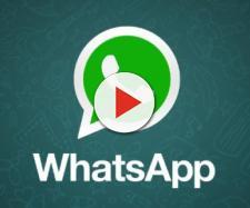 Con il nuovo aggiornamento si potranno salvare i vocali su WhatsApp
