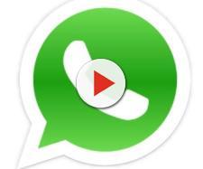 Whatsapp, le cose da sapere sul futuro
