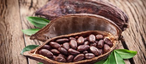 5 Beneficios del Cacao - Salud - Kiwiblog - kiwilimon.com