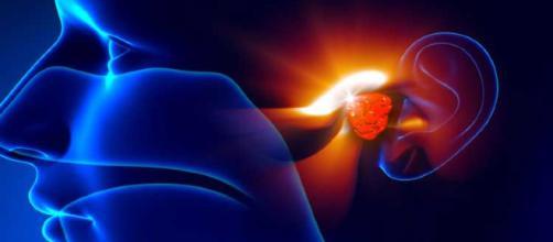 Las adenoides son dos pequeñas glándulas compuestas por tejido linfoide