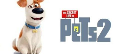 The secret Life of Pets 2 Archives – The Cinemaholic - thecinemaholic.com