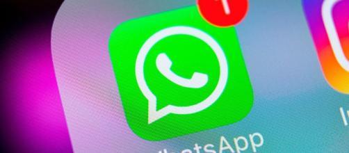 WhatsApp bajó la edad mínima para poder usar su servicio -