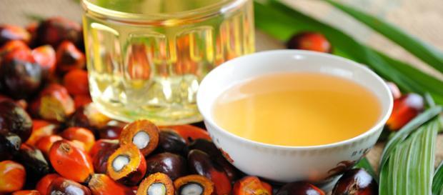 El aceite de palma, ¿es tan peligroso como dicen? - donconsejo.com