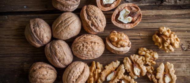 Los 5 tipos de nueces más consumidos en el mundo - animalgourmet.com