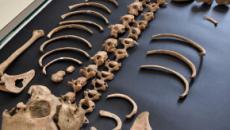 Parco Archeologico di Pompei, trovato lo scheletro di un bambino negli scavi
