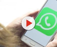WhatsApp: divieto ai minori di 16 anni e attesa per una nuova funzione.