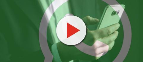WhatsApp è pronta a scontrarsi con un altro temibile avversario