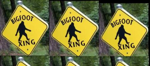 Bigfoot spotted in New Jersey. [image source: ExMag - YouTube]
