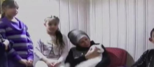 Un gato huye de la guerra de Siria con su familia y los pierde