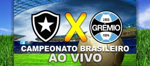 Assistir Botafogo x Grêmio ao vivo, pela internet ou televisão. (foto reprodução).