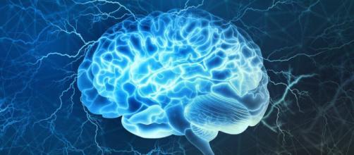 Corteza prefrontal, una de las partes más interesantes del cerebro - lamenteesmaravillosa.com