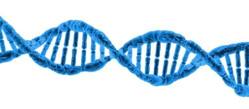 Cuántas mutaciones hacen falta para que se desarrolle un cáncer? - noticiasalud.com