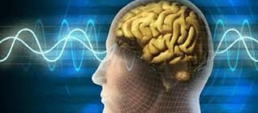 ¿Sabías que escuchar reggaeton te puede causar daño cerebral?