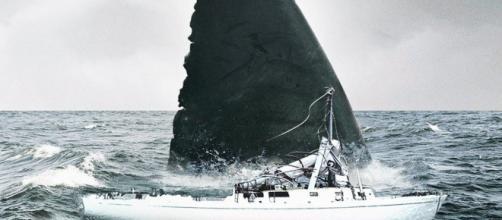 Giant Prehistoric Shark Revealed in Jason Statham's The Meg - MovieWeb - movieweb.com