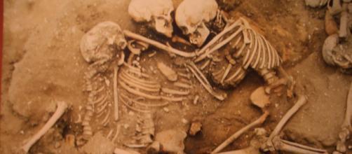 140 skeletons found in northern Peru. - [Image Credit: Michael Tyler via Flickr]