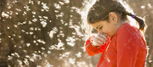 Alergias: Llega la primavera ¡Cómo me pica la nariz! | Mamás y elpais.com
