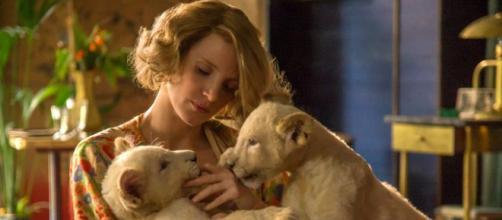 Melodrama en el zoológico con Jessica Chastain