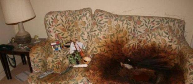 Filha deixa mãe presa em sofá com fezes e sem trocar roupa por 10 anos