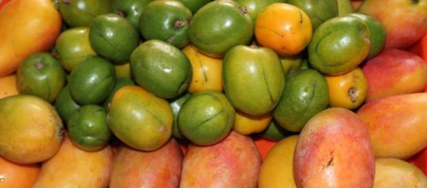 Frutas Cubanas | FRUTIMANIA!!! | Pinterest | Cubanas, Fruta y Ciruelas - pinterest.es