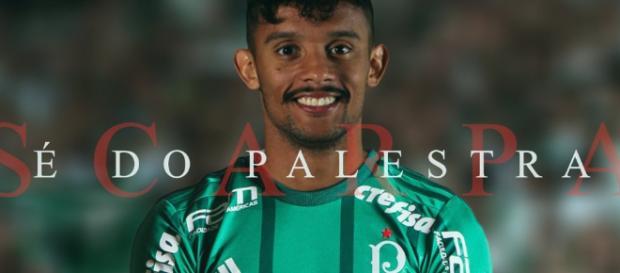 Gustavo Scarpa, meia do Palmeiras. (foto reprodução).